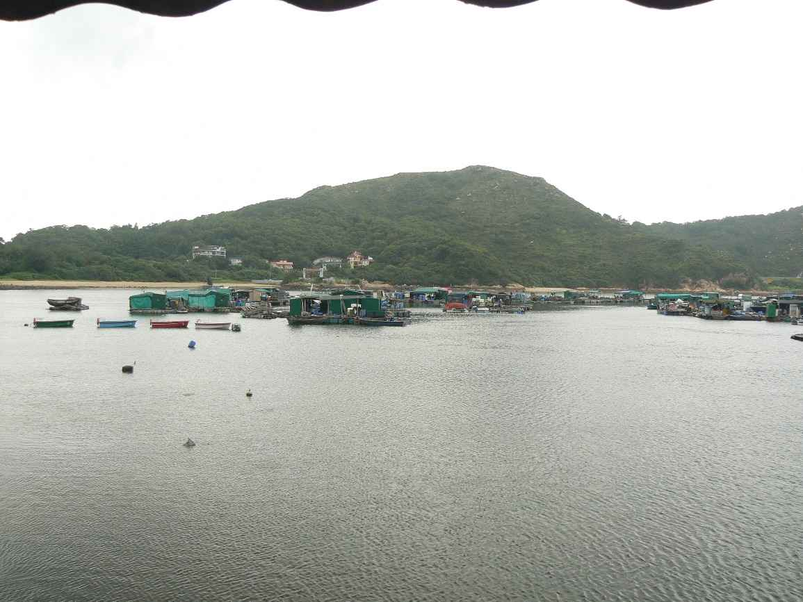 View from one of the seafood restaurants at Sok Kwu Wan